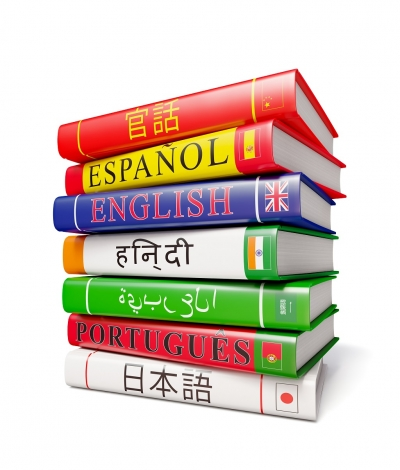 Foreign world languages study